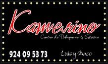 logo camerino