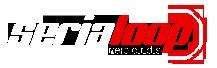 logo serialoop